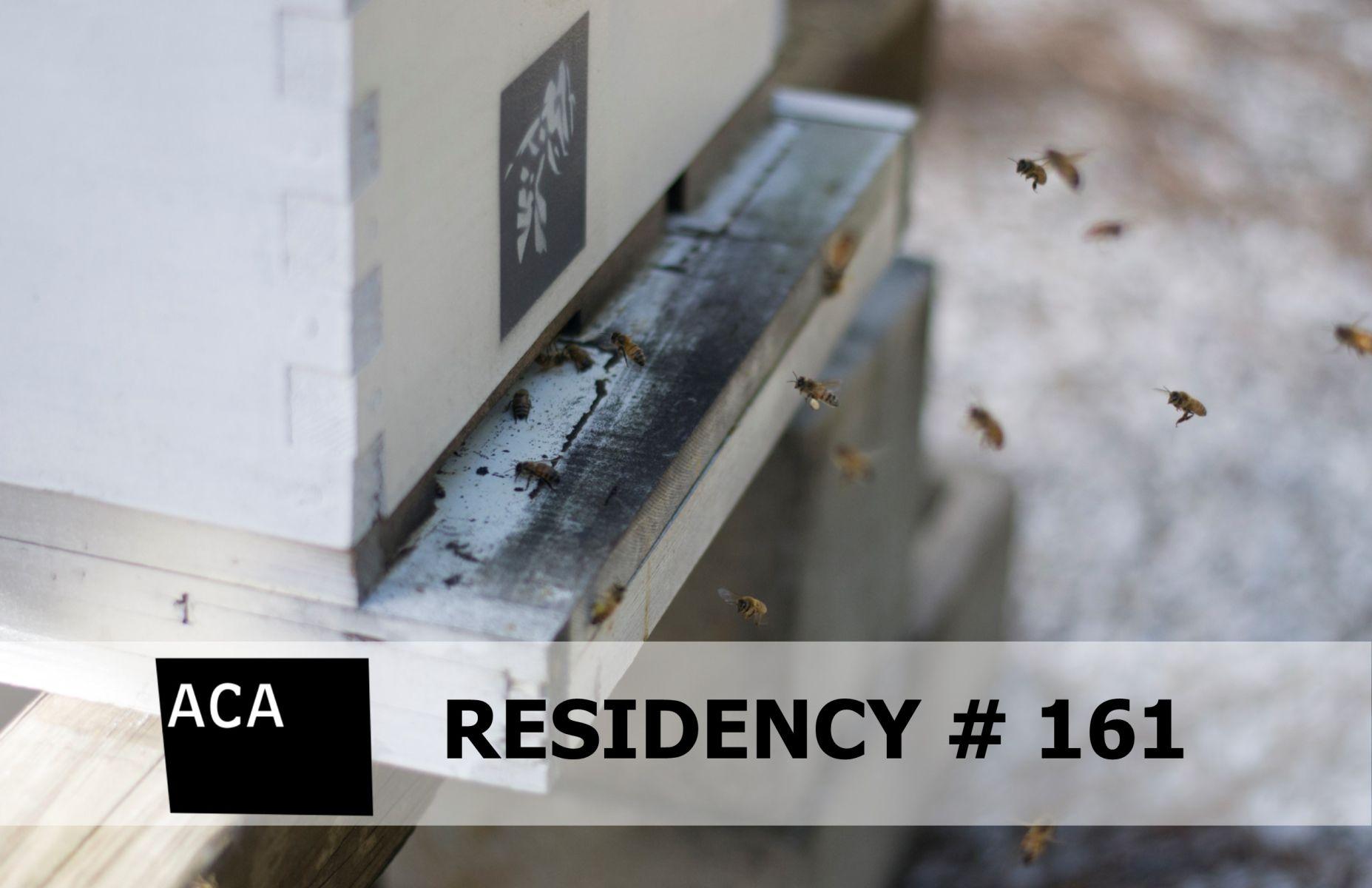 RESIDENCY # 161